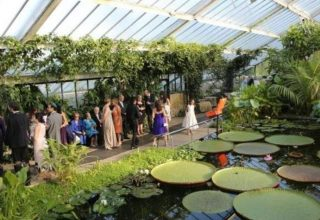 Kew Gardens Corporate Function, The Princess of Wales Conservatory
