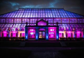 Kew Gardens Corporate Party, The Orangery