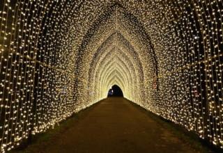 Kew Gardens Christmas Walkway, Cherry Walk