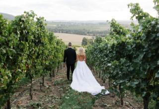 Levantine Hill gorgeous winery wedding photo by Erin & Tara grapevines