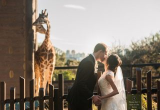 Couple kissing Taronga Zoo wedding