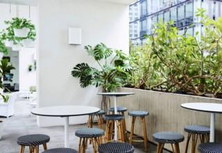 Ivy Sunroom Terrace Drinks, Whole Venue