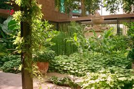 Garden Museum Sackler Garden