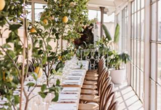 Lemon tables corporate event greenfields albert park