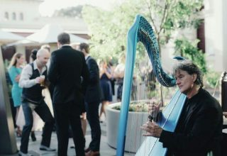 Musician playing at Jardin Tan Melbourne wedding
