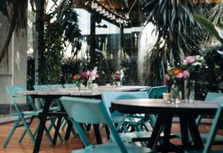 Jardin Tan Drinks Setting, Glasshouse