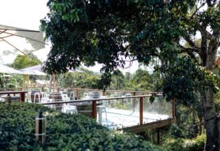 Austinvilla Estate Private Event Venue Gold Coast, Photo By Danielle Knight & Co Photography-Austinvilla-Estate-Wedding-Venue-Rainforest-Deck.jpg