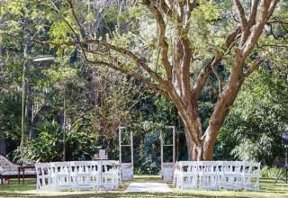 Bundaleer Rainforest Gardens Brisbane Wedding Venue Jacaranda Tree Ceremony