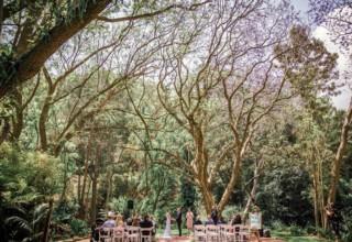 Bundaleer Rainforest Gardens Brisbane Wedding Venue Ceremony Under Jacaranda Tree